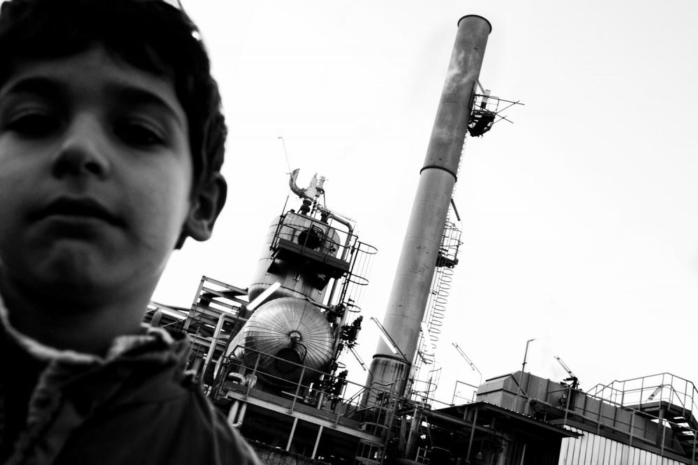 radici d'acciaio_006